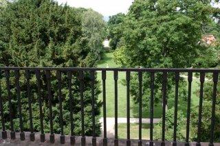 Achse Schloss - Tannenwaldallee