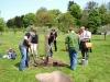 """4 gespendete Apfelbäume der Sorte """"Kartäuser"""" wurden fachgerecht gepflanzt [Foto: Dr. E. Handke]"""